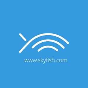 Skyfish dropbox alternative