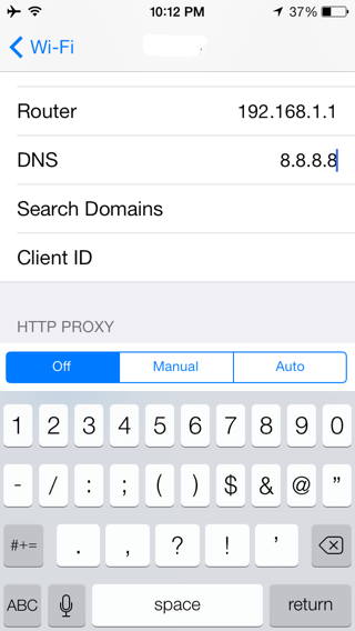 Custom DNS Settings on iPhone