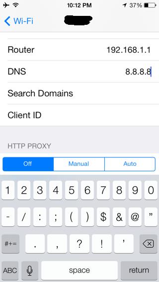 Custom DNS Settings on iPhone