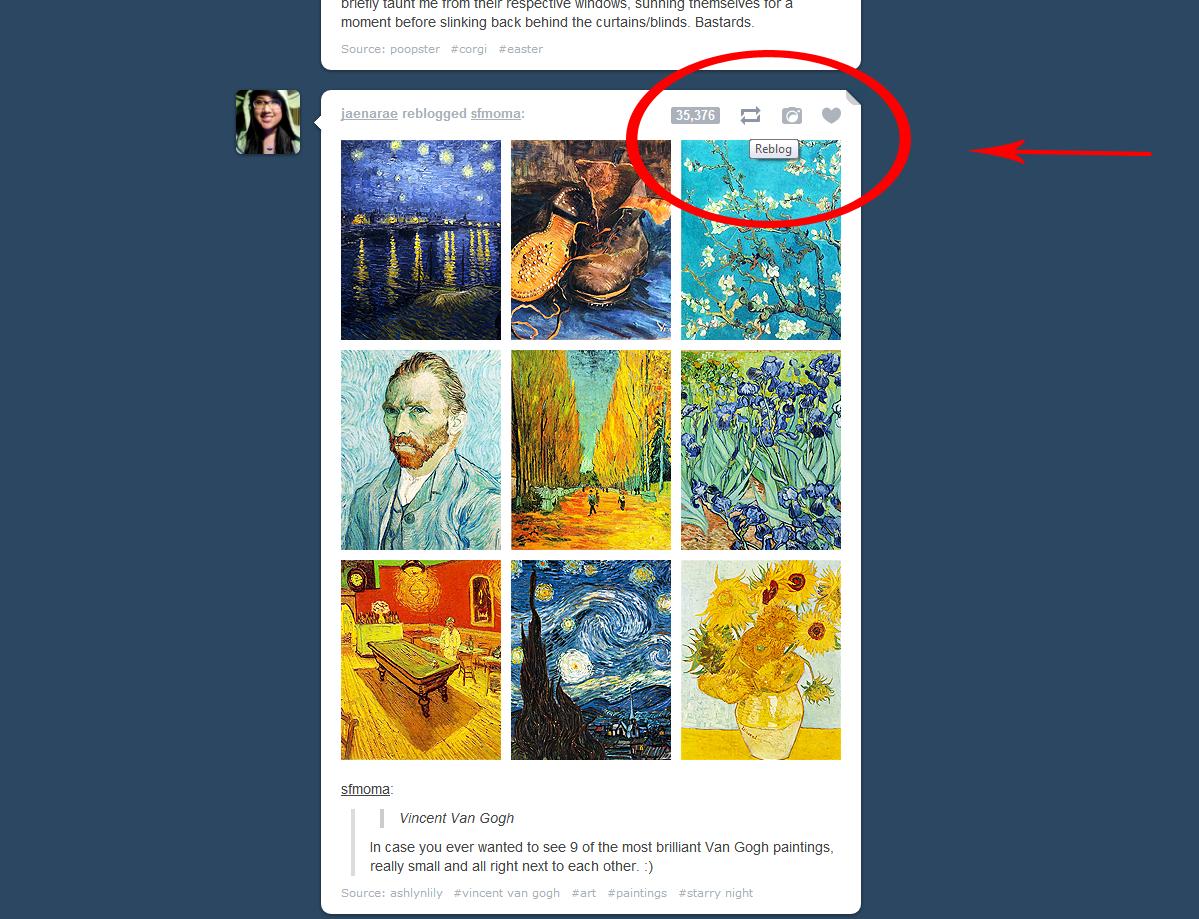 tumblr reblog