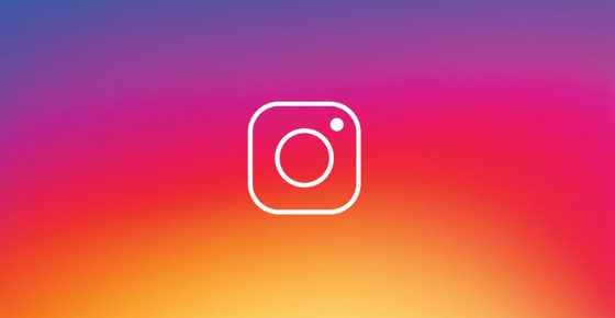 Instagram Followers for Business