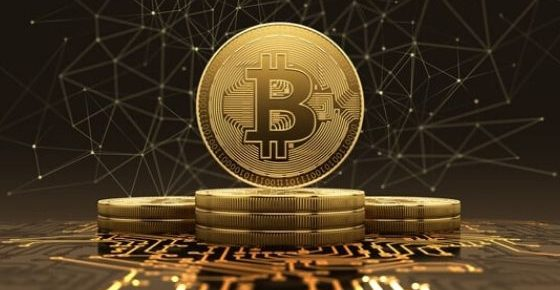 How Lucrative is the Bitcoin Trade