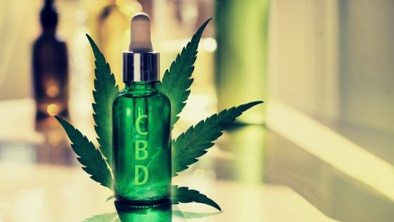 Tips For Buying The Organic CBD Oil