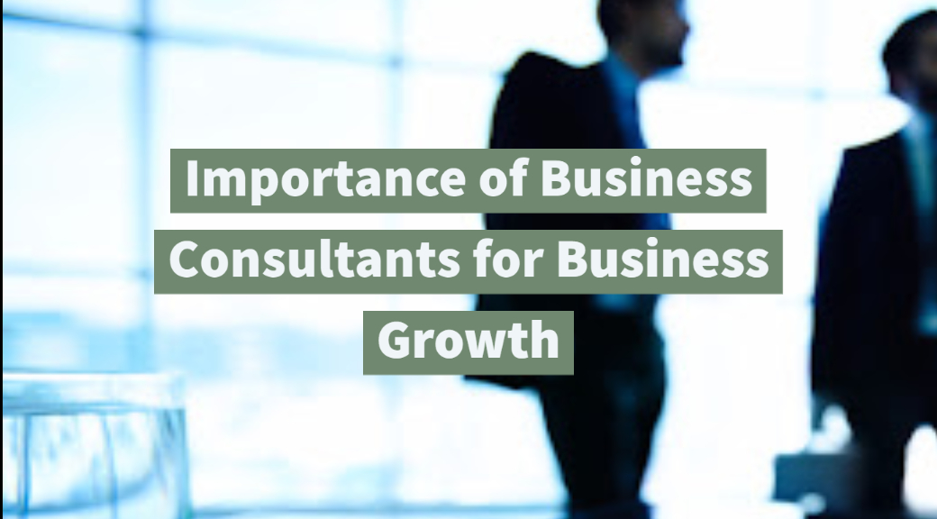 Importance of Business Consultants for Business Growth
